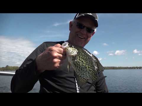Cadillac Crappies, Lake Erie Walleye, And More!!! - Hot Bite Fishing Report