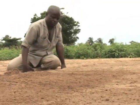 Vegetable Farming in Tettekope, Ghana
