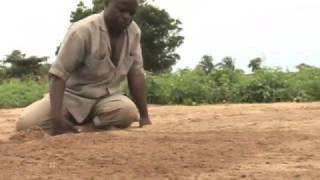 Vegetable Farming in Tettekope, Ghana