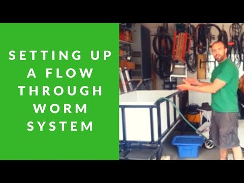 Setting Up A Commercial Worm Composter