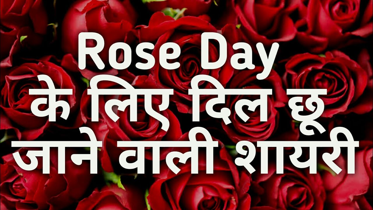 Rose Day Shayari Sms Status Quotes In Hindi Youtube