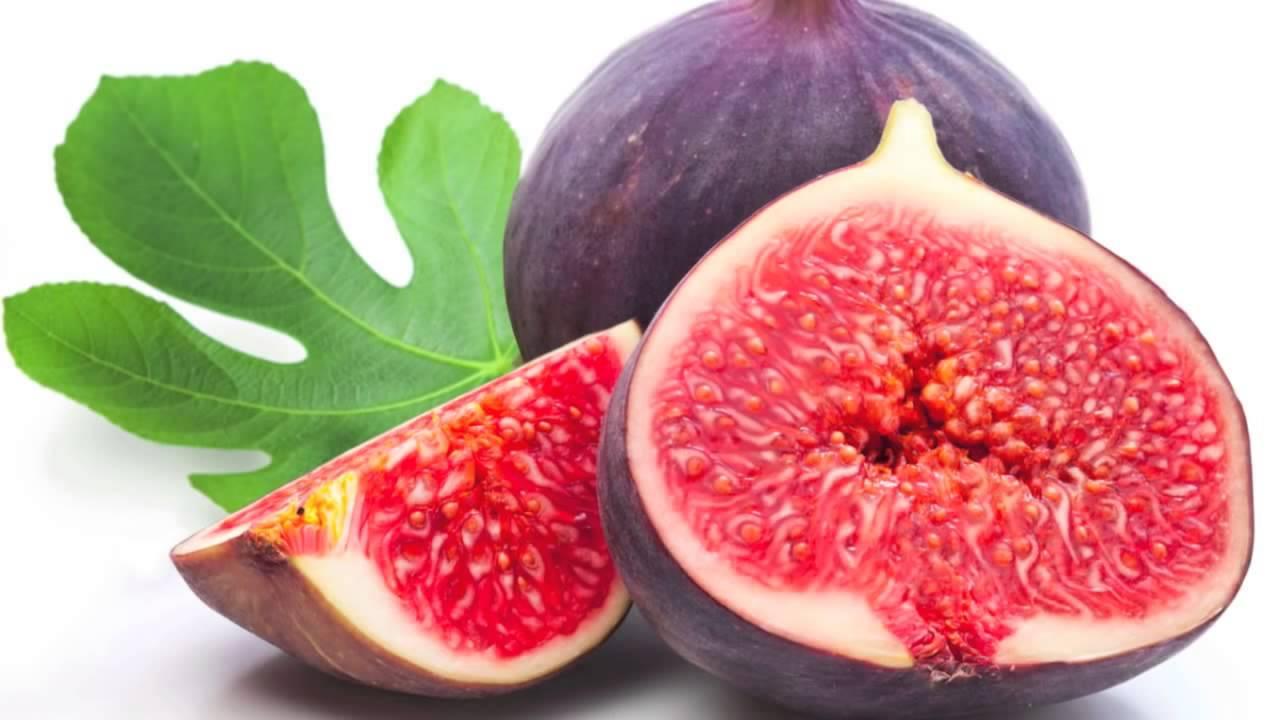 фото инжира плода