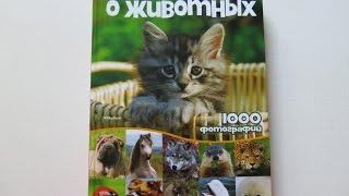 Книга, которую покупают все мамы!Моя большая книга о  животных.1000 фотографий.Обзор.