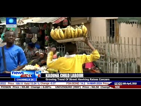 Stakeholders Express Concerns Over Growing Trend Of Child Labour In Kaduna