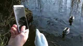 SONY SMARTPHONE XPERIA ARC S WHITE as Swans Thumbnail