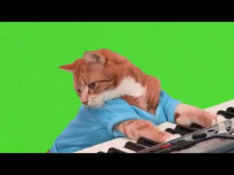 The ULTIMATE Green Screen Compilation / Chroma Key Effects