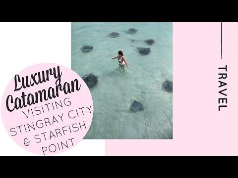 A Day aboard a Catamaran visiting Stingray City and Starfish Point   Katie KALANCHOE