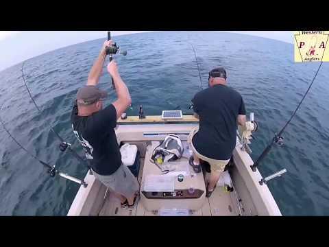 Trolling 4 walleye on lake erie pa using dipsey divers july 2017