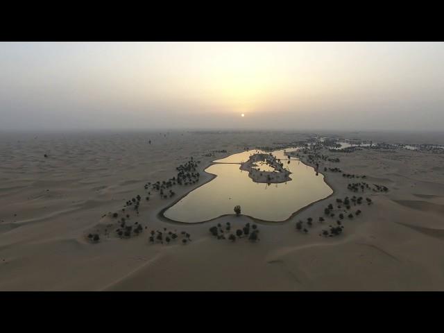 Al Qudra Lakes 2018
