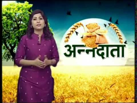 Know about preparation for sowing kharif crop