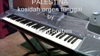 Palestina kosidah orgen tunggal