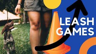 Exercises to Help You Master Leash Walking