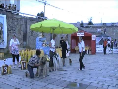 Альянс-шоу-2011 Гордость Отечества