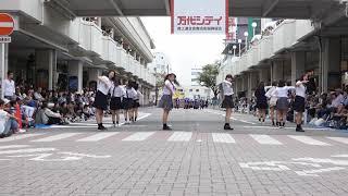 20 新潟大学K popダンスサークルPINCE