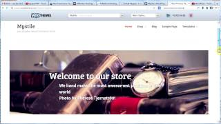 Make a Professional Website #14 -- WordPress Ecommerce Tutorial