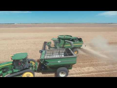 2016 Nebraska Wheat Harvest