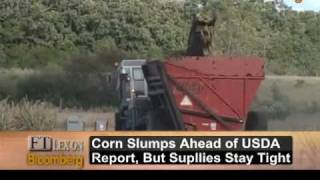 FT's Lex Columnist Allison on Agricultural Commodities: Video