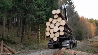 Ponsse Elk loading big logs