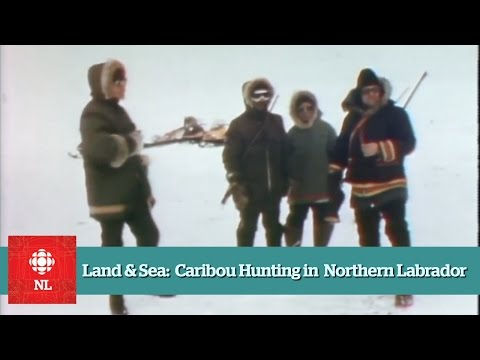 Land & Sea: Caribou hunting in northern Labrador