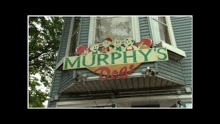 Hot dog fans line up for final day at Murphy's in Lakeview