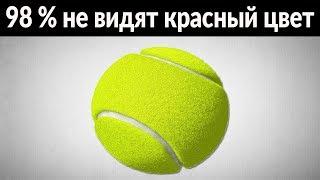98% ЛЮДЕЙ НЕ МОГУТ УВИДЕТЬ КРАСНЫЙ ЦВЕТ | какого цвета теннисный мяч?