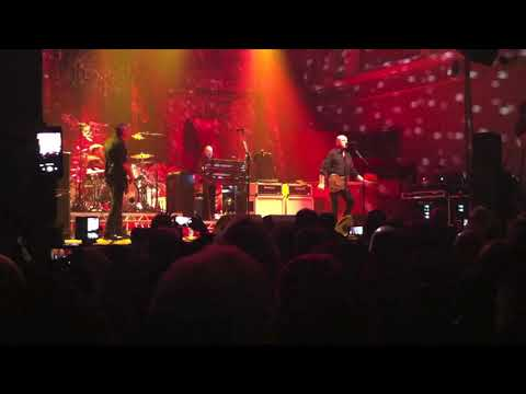 The Stranglers Live in Belfast- Golden Brown