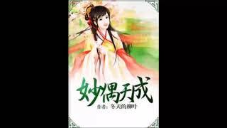 《妙偶天成》有声小说 第 197 集