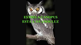 ESTRELA CANOPUS