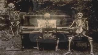 Siouxsie & The Banshees - Overground (Lyrics On Screen)