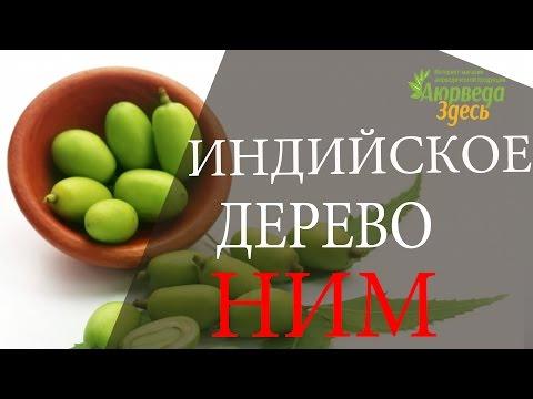Масло Ним (Neem Oil) -