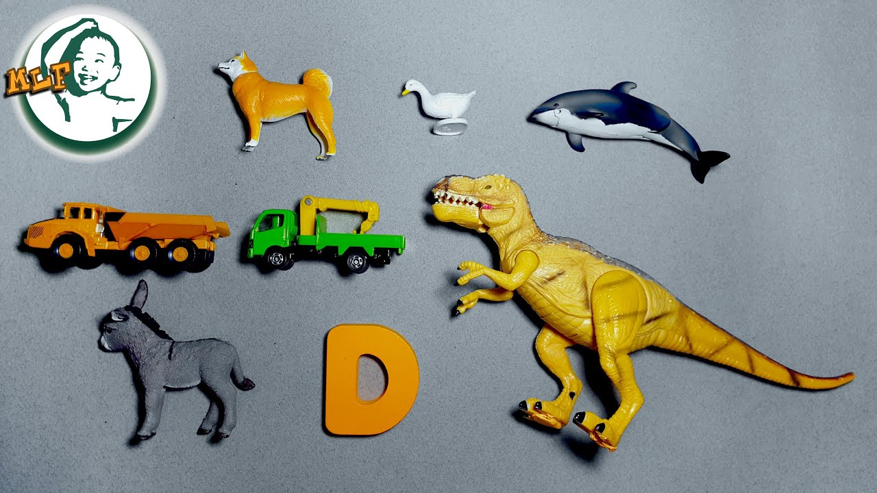 Toys That Start With A : Words that start with d learn alphabet common