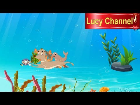 Lucy Channel |