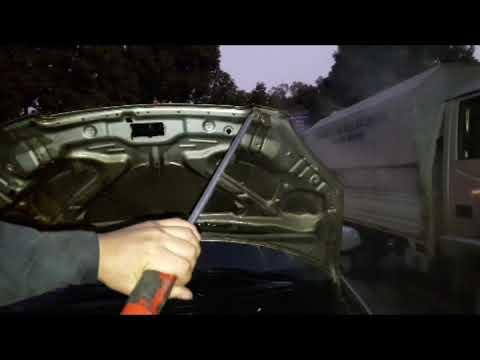 Rửa động cơ ô tô để chống chuột .Haunted car wash near me | Mạnh ô tô