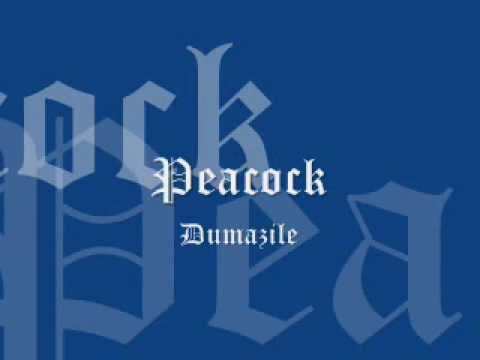 Peacock   Dumazile