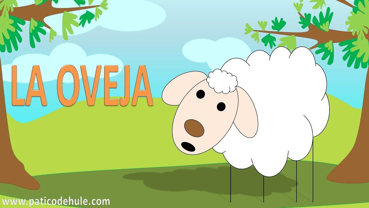 Animales Para Niños: La Oveja