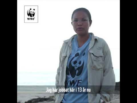 Tillsammans gör vi skillnad - Domoina Rakotomalalas röst om havet