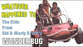 Whatever Happened to the Kids from Wonderbug