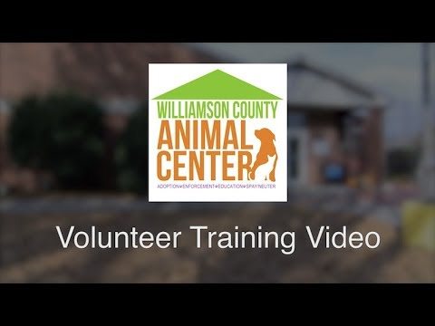 WCAC Volunteer Training Video - (Working with Dogs)