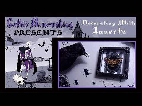 Gothic Homemaking Presents - Decorating With Insects