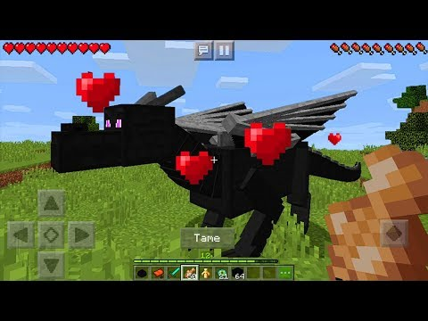 How To Tame And Ride The ENDER DRAGON In Minecraft PE (Pocket Edition) - Coded Addon In MCPE