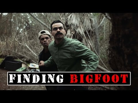 Finding Bigfoot | David Lopez - YouTube