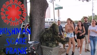 BUSHMAN SCARE PRANK AT RED HOT CHILI PEPPERS CONCERT