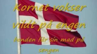 Shu bi dua Danmark med tekster