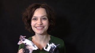 Делаем фото оригами символа 2018 года - собачек.