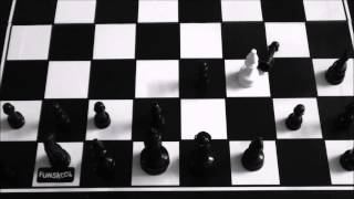 The Checkmate