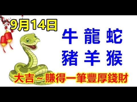 9月14日生肖運勢_牛、龍、蛇大吉