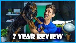 2 Year Review  Cavalier King Charles Spaniel