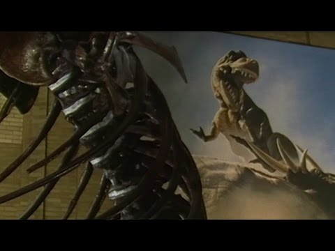 What Was Tyrannosaurus Rex Like? - #Attenborough90 - BBC