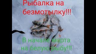 Рыбалка на безмотылку В начале марта