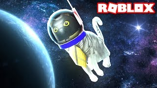 SIR MEOWS A LOT GOES TO SPACE thumbnail